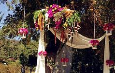 深秋玫红自然系婚礼