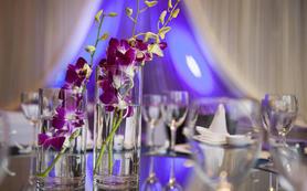 紫色爱恋——遇见幸福 主题婚礼