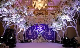 【爱尚侬婚礼策划 】—《樱为爱》