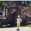 和老公的丽江10日游~算是度蜜月啦~