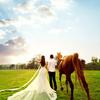 马场婚照,果然霸气侧漏够野性