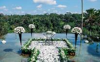 巴厘岛蝴蝶别墅水上婚礼
