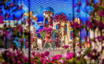 【洛克花艺】圣托里尼风格主题婚礼