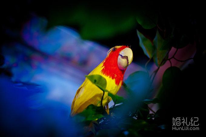 1,舞台背景 独家《鸟雨林海岛主题婚礼》创意主题场景的设计策划与