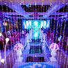 灯光对婚礼布置多重要 看完就懂了