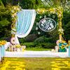 迟来的草坪婚礼跟拍 森系主题
