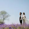 我的草坪婚礼&花海里的婚纱照 精心筹备来上图了