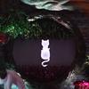 猫咪黑森林主题订婚宴 就是要这么特别